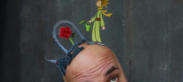 Prinz auf Glatze